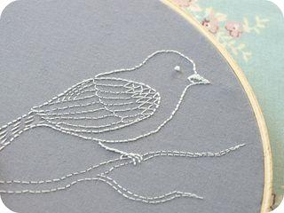 Bird close-up